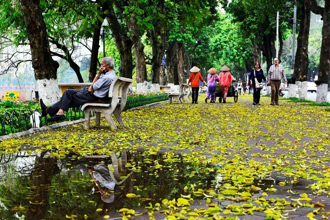 Hoan Kiem Lake offers a joyous blast of rich, autumn colours— the perfect backdrop for wedding day photos.